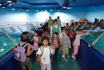 معرض الصورمربئالشارقه للاحياء (34)24-07-2008-SMD-c