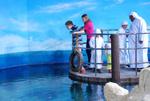 معرض الصورمربئالشارقه للاحياء (39)24-07-2008-SMD-c